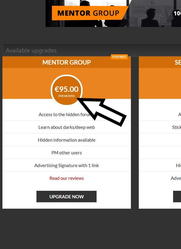 mentor-group-per-month.jpg